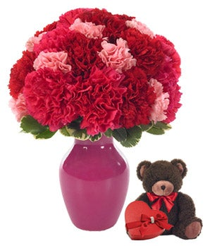 Red & Pink carnations with teddy bear