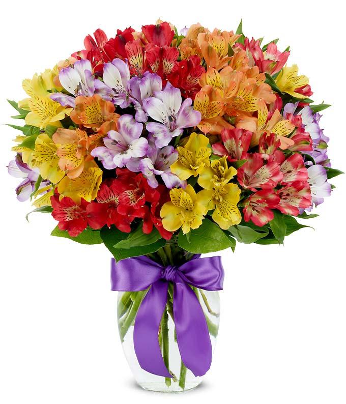 Rainbow Peruvian Lily Bouquet