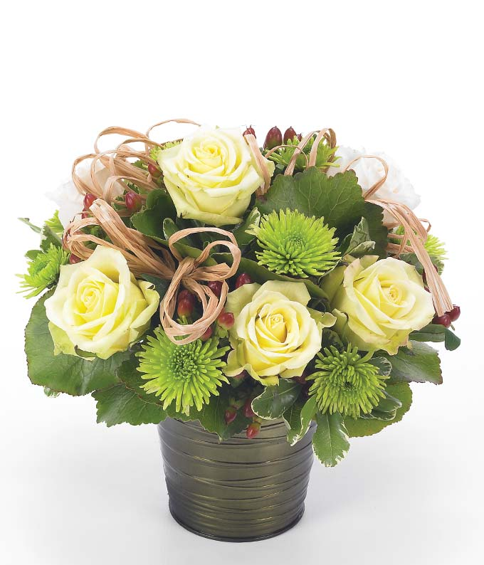 White Rose Garden - Regular Leave a lasting impression with this stunning arrangement of roses, poms and hypericum adorned with natural raffia in a round pot cover to show her how much they means to you. Measures 12 H by 11 L. Includes:  Jade Roses Brown Hypericum Green Button Poms Round Iridescent Pot  Delivered by a Local Florist