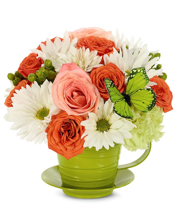 Flowers - Beautiful Butterfly Tea Cup Bouquet - Regular