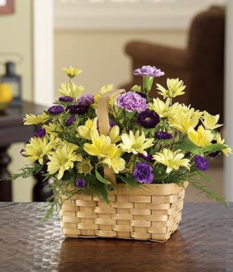 Sunshine Daisy Basket