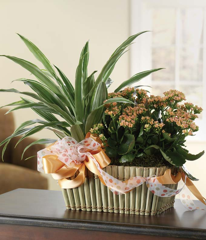 Bountiful Blooming Garden Basket at From You Flowers