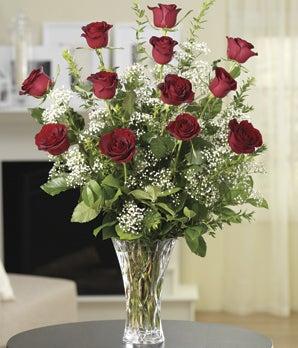 Classic Red Dozen Roses