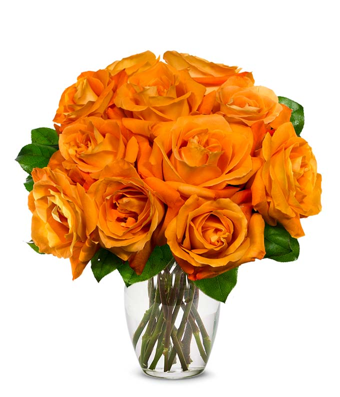 One Dozen Orange Roses At From You Flowers