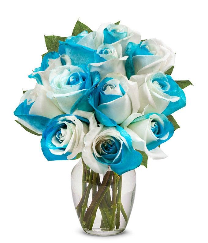 Two Dozen Long Stem Red Roses