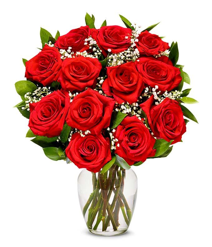 One Dozen Premium Long Stem Red Roses
