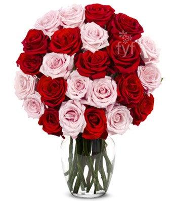Two Dozen Long Stemmed Red & Pink Roses