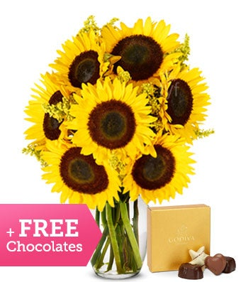 Stunning Sunflower Bouquet with Free Chocolates