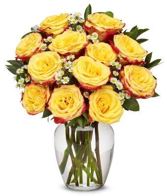 Festive Yellow Roses