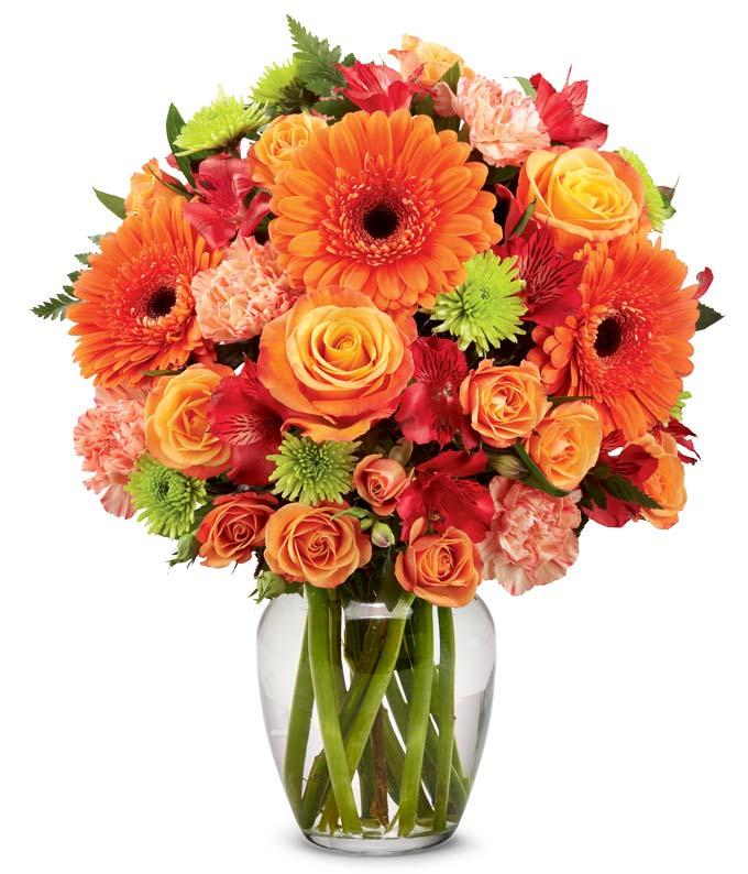 Flowers - Vibrant and Bright - Regular