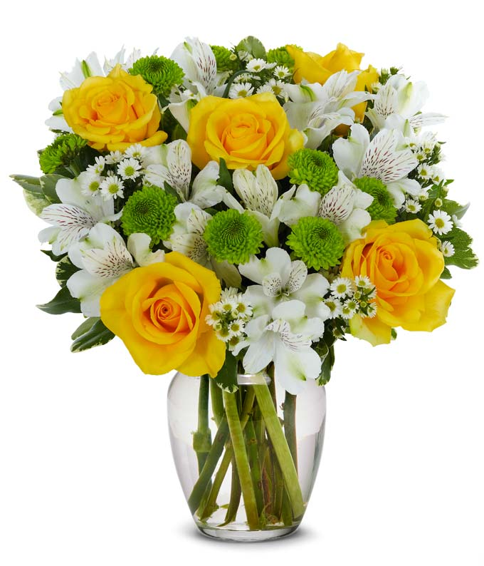 Lovely Lemon & Lime Roses