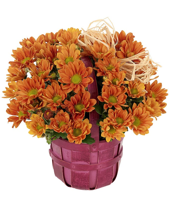 Fall Daisy Bushel Basket