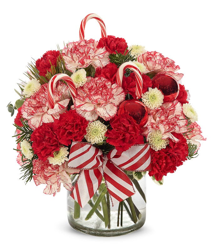 bi-color carnations with candy canes