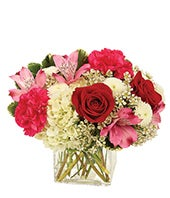 Modern red rose and pink flower Valentine's Day bouquet