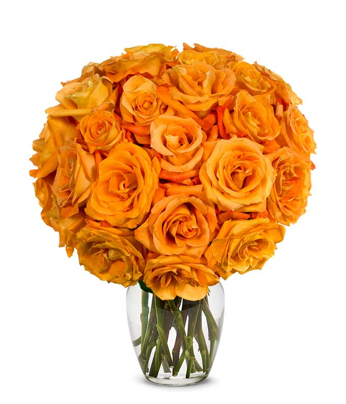 Two Dozen Orange Roses