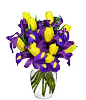 Yellow Tulip and Blue Irises