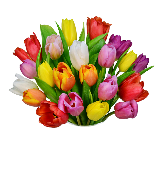 20 stems of tulips in red, orange, yellow and purple