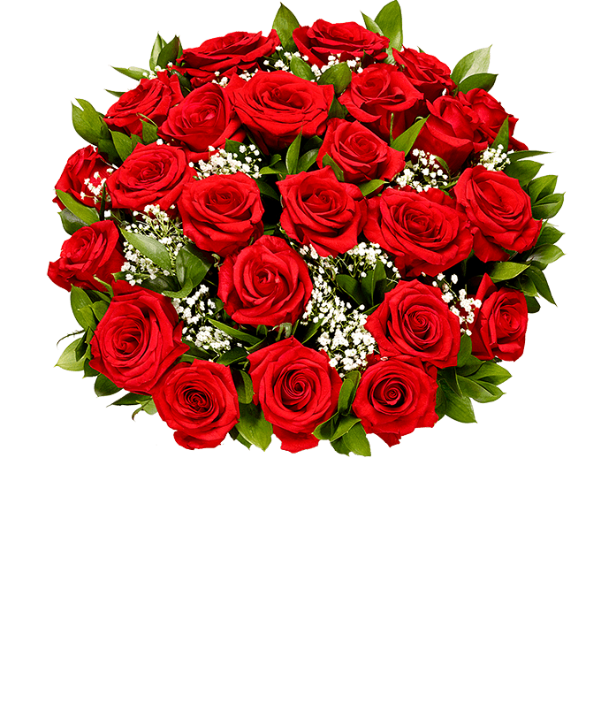 Two Dozen Red Roses with Baby's Breath