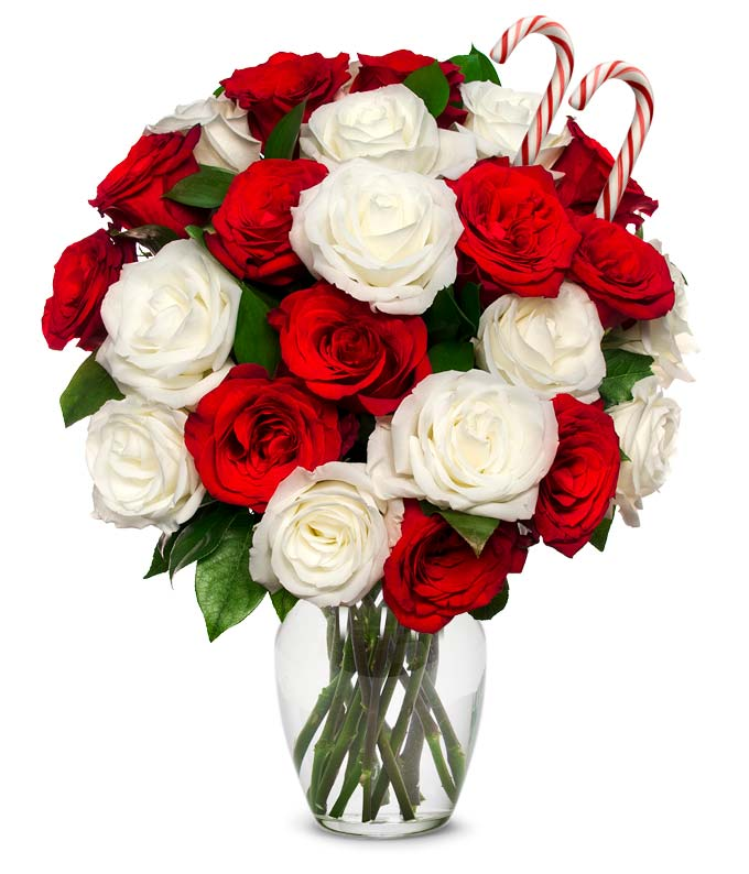Merry Christmas Bouquet - Premium