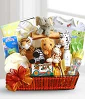 Noah's Ark new baby gift basket
