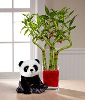 Heart to Heart Valentine's Day Bamboo