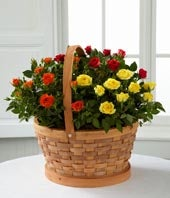 The FTD� Blooms of Fall Rose Garden Basket by Better Homes and Gardens�