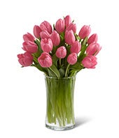 Pink Prelude Tulip Bouquet with FREE Glass Vase