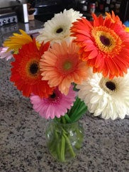 Customer photo of Daisies delivered to Washington, DC