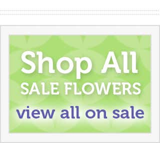Shop all sale flowers
