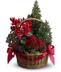 Woven basket with pine cones and mini trees