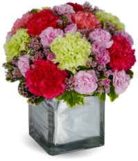 Mixed carnations in a square vase