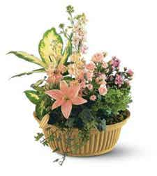 Basket with pink lilies and mini pink flowers