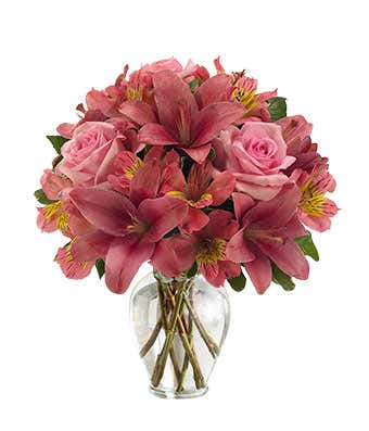Pink In Bloom At From You Flowers