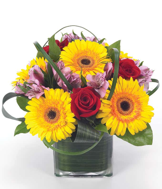 Sunflowers, red roses and purple alstroemeria in square vase