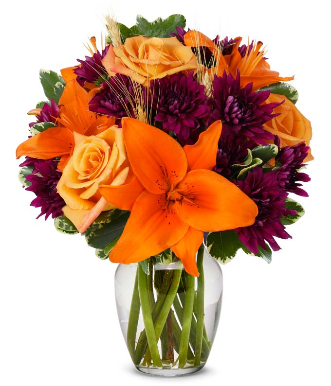 Orange Purple Blooms At From You Flowers