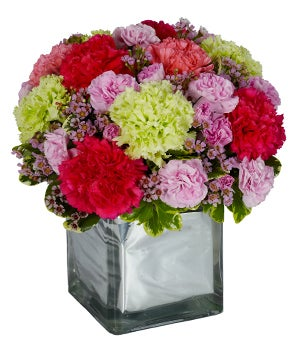 Pink carnations, green carnations and red carnations in square vase