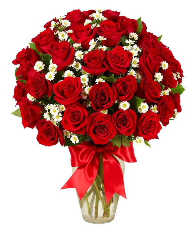 Three dozen red roses - long stem