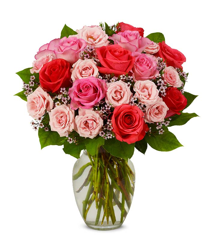 Pink roses including spray and long stem in a glass vase