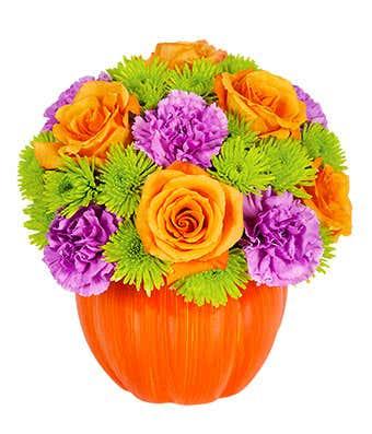 Flowering Pumpkin