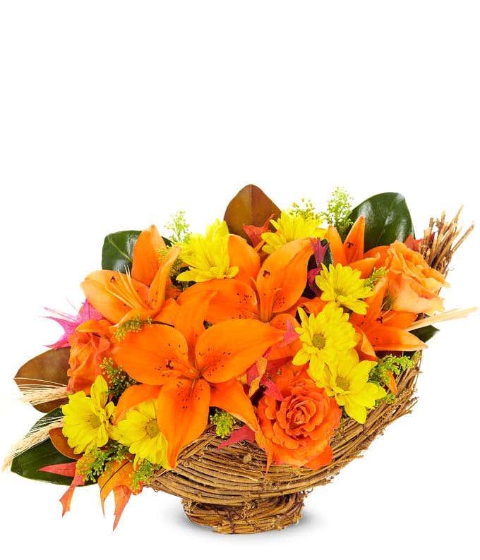 All Flower Cornucopia