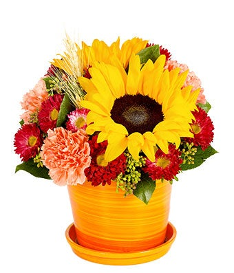 Sweet Sunflower Bouquet