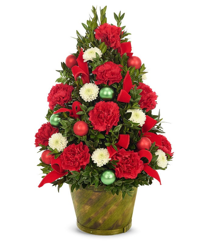 live mini christmas tree arrangement - Mini Live Christmas Trees