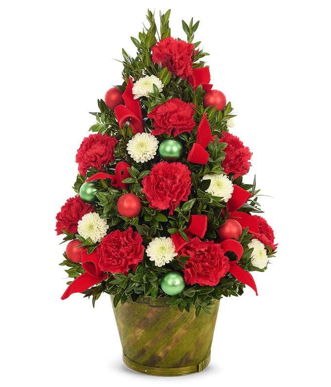 live mini christmas tree arrangement - Live Mini Christmas Tree
