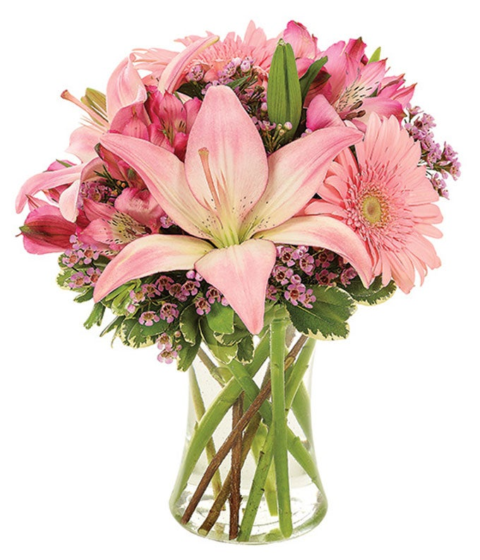 Pink Gerbera Daisies and Pink Lilies for Valentine's Day