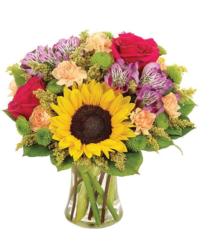 So Sunny Sunflower