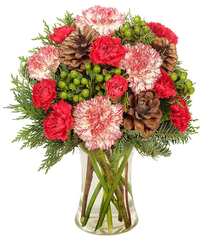 bi-colored carnations, green hypericum berries and pine cone bouquets