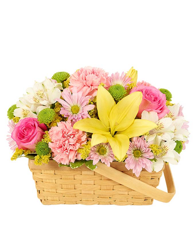 pastel perfection basket at from you flowers. Black Bedroom Furniture Sets. Home Design Ideas