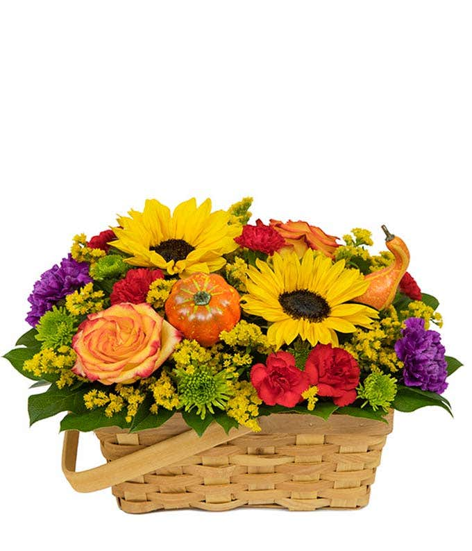 Sunflowers, pumpkin decorations and orange roses delivered in a basket