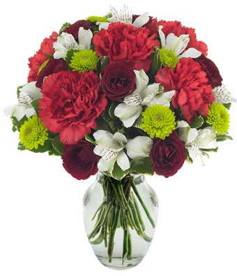 Red carnations, green poms and white alstroemeria delivered