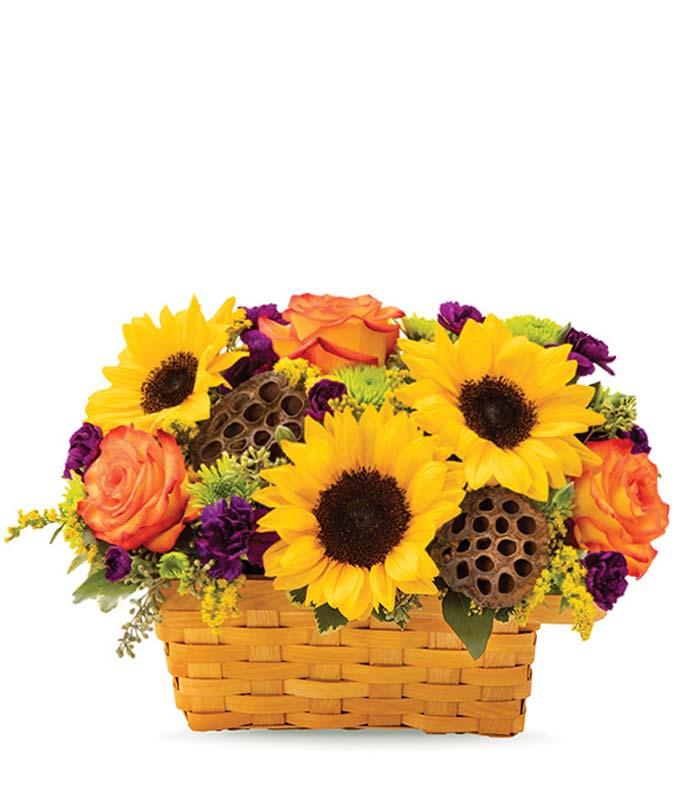 Falling For Sunflowers Bushel